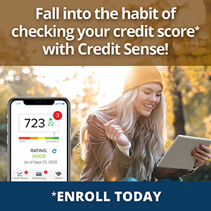 Fall into the habit of checking your credit score* with Credit Sense.