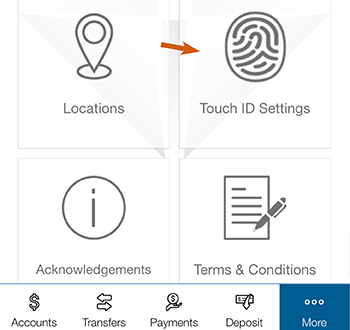 Image of the touch id thumbprint in mobile banking